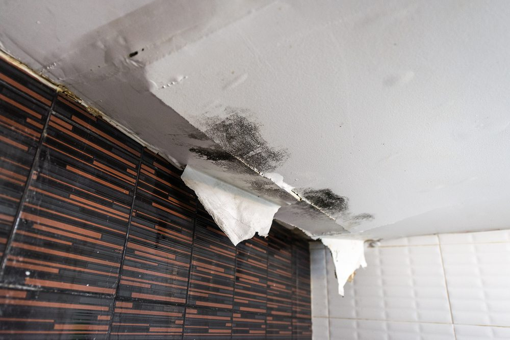 What s Causing Your Ceiling Damage Water Damage Restoration by DRS