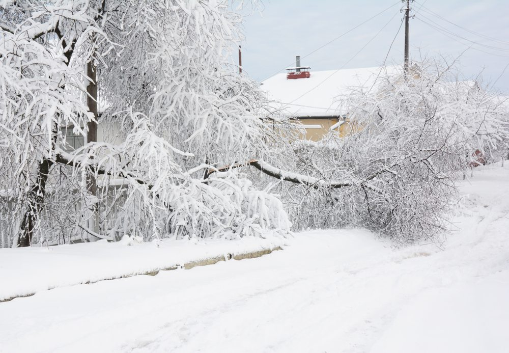 ice snow rain causing crazy winter weather and flooding DRS Disaster Restoration Services of Portland, Middletown, New Britain, New Haven, Norwich, CT, Springfield, Chicopee, Worcester, Framingham, MA, and Providence, Warwick, Taunton, and Fall River, RI